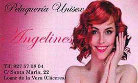 Peluquería Angelines